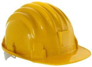 Federal Construction Workers